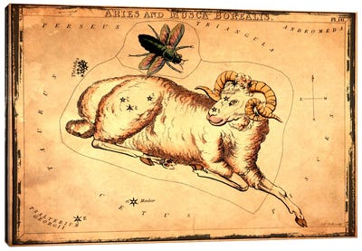 Aries & Musca Borealis1825 Canvas Art Print