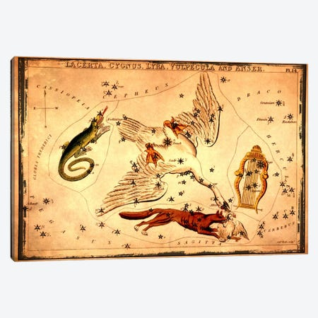 Lacerta, Cygnus, Lyra, Vulpecula & Anser Canvas Print #ICA1090} by Sidney Hall Canvas Wall Art