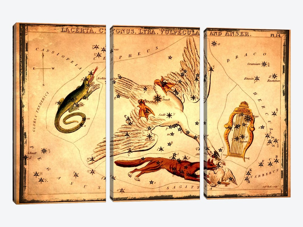Lacerta, Cygnus, Lyra, Vulpecula & Anser by Sidney Hall 3-piece Canvas Wall Art