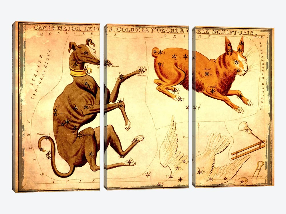 Canis Major Lepus, Columba Noachi, & Cela Sculptoris by Sidney Hall 3-piece Canvas Art