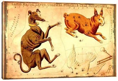 Canis Major Lepus, Columba Noachi, & Cela Sculptoris Canvas Art Print