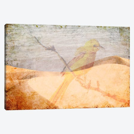 Misplaced Canvas Print #ICA1100} by iCanvas Canvas Wall Art