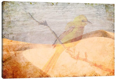 Misplaced Canvas Art Print