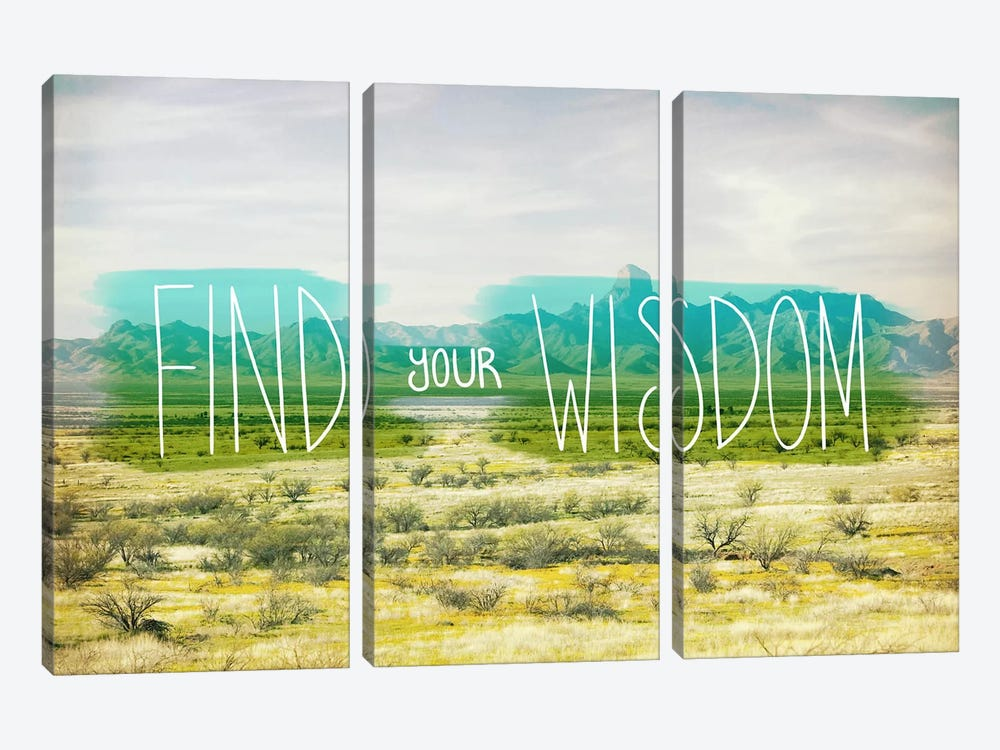 Find Your Wisdom by iCanvas 3-piece Canvas Artwork