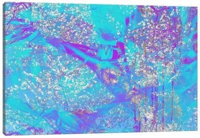 Streaks of Almond Blossoms Canvas Art Print