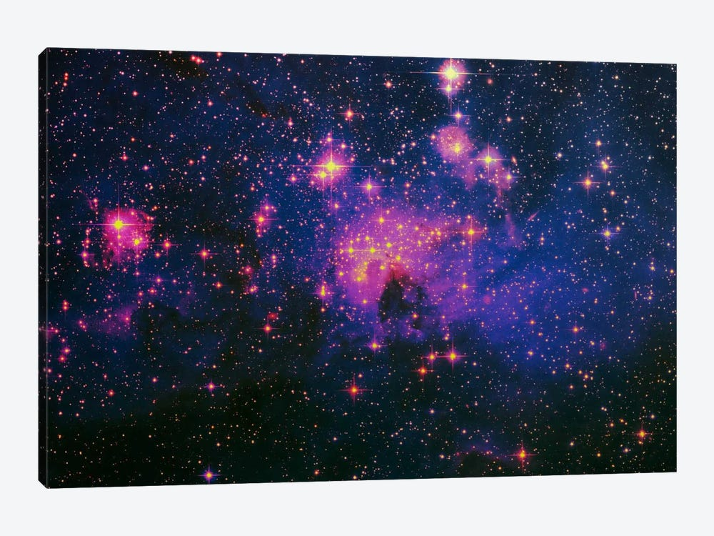 Cosmos by 5by5collective 1-piece Canvas Artwork