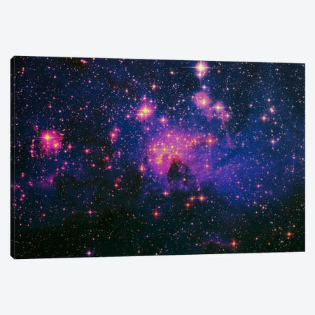 Cosmos Canvas Print #ICA1133} by 5by5collective Art Print