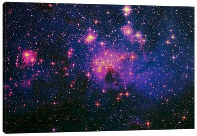 Cosmos Canvas Art Print