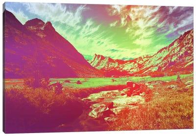 Hyper Paradise Canvas Print #ICA1134