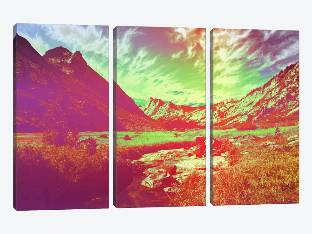 Hyper Paradise by 5by5collective 3-piece Canvas Print
