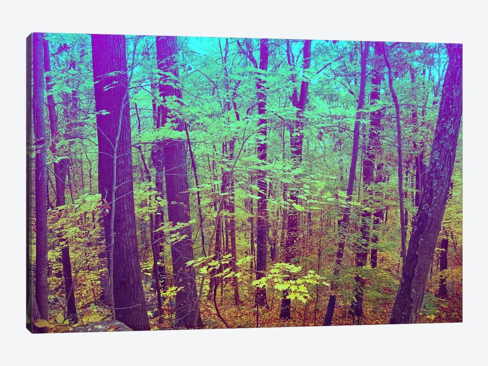 Psychedelic Forest by 5by5collective 1-piece Canvas Art