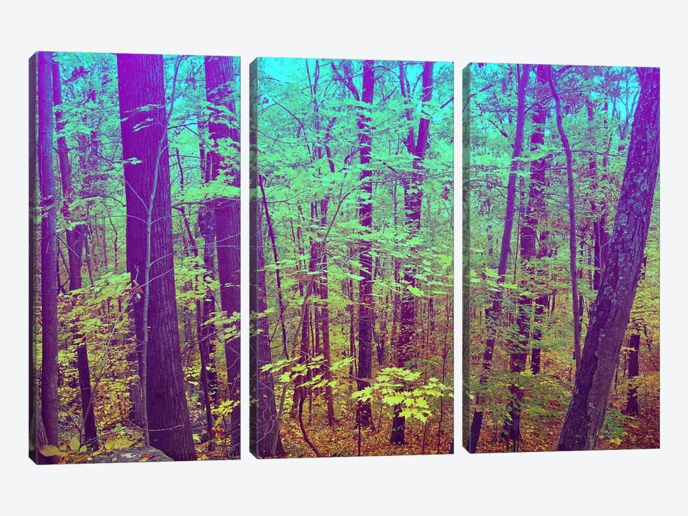 Psychedelic Forest by 5by5collective 3-piece Canvas Wall Art