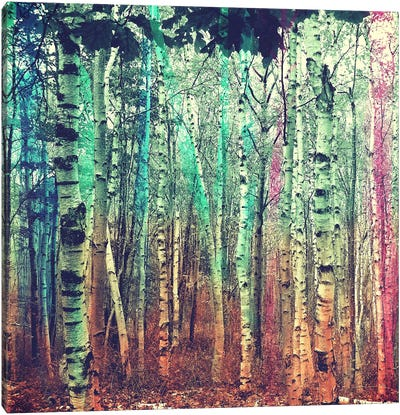 Colorized Forest 3 Canvas Art Print