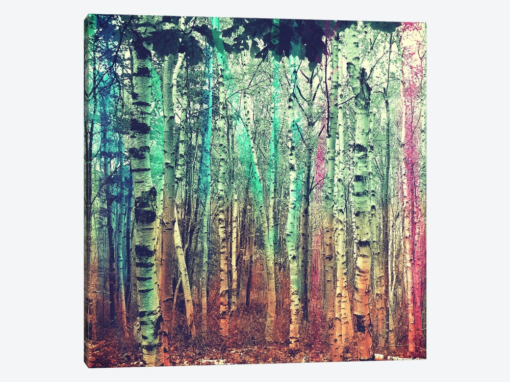Colorized Forest 3 by iCanvas 1-piece Art Print