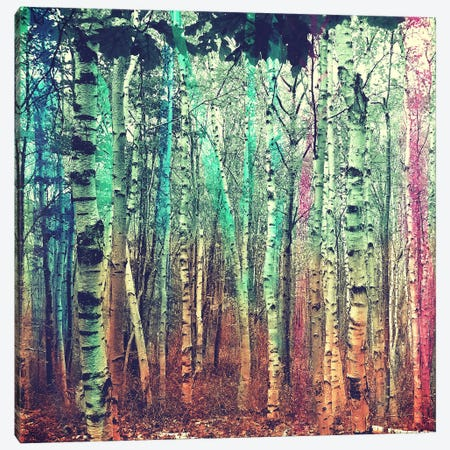 Colorized Forest 3 Canvas Print #ICA1150} by Unknown Artist Canvas Print