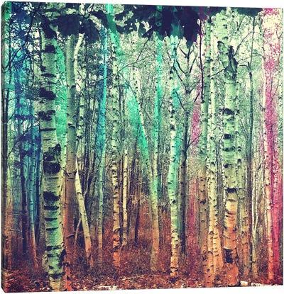 Colorized Forest 3 Canvas Art Print