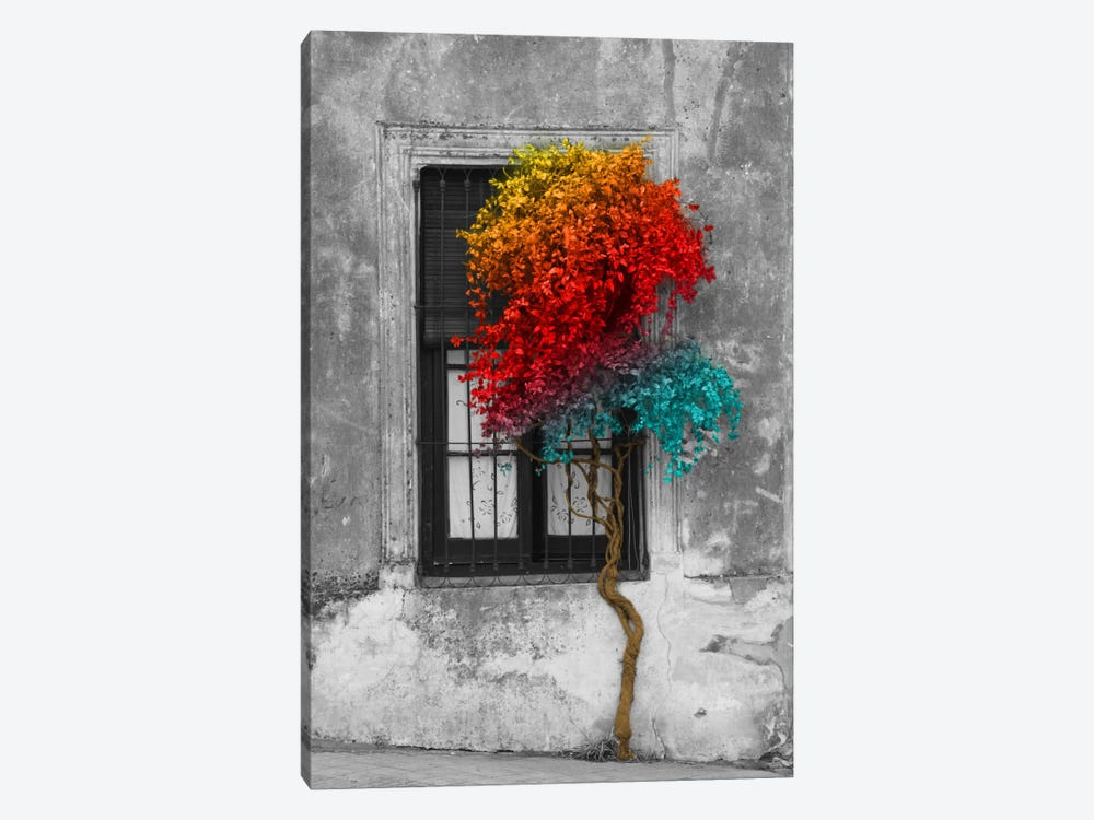 Tree in Front of Window Rainbow Pop Color Pop by Panoramic Images 1-piece Canvas Wall Art
