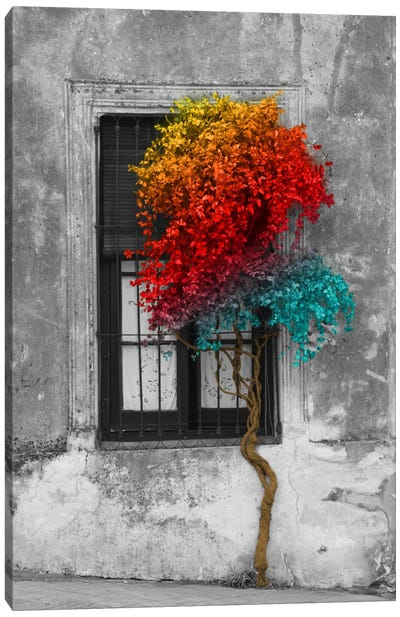 Tree in Front of Window Rainbow Pop Color Pop Canvas Art Print