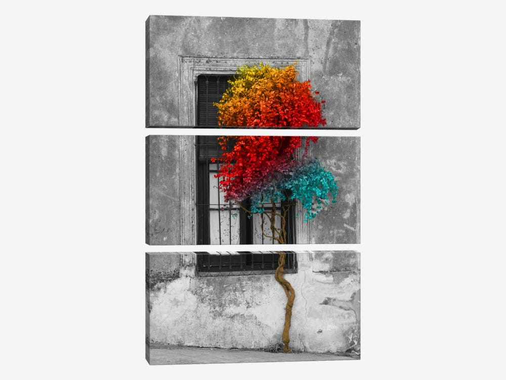 Tree in Front of Window Rainbow Pop Color Pop by Panoramic Images 3-piece Canvas Wall Art