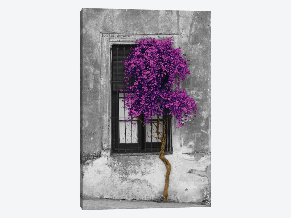 Tree in Front of Window Purple Pop Color Pop 1-piece Art Print