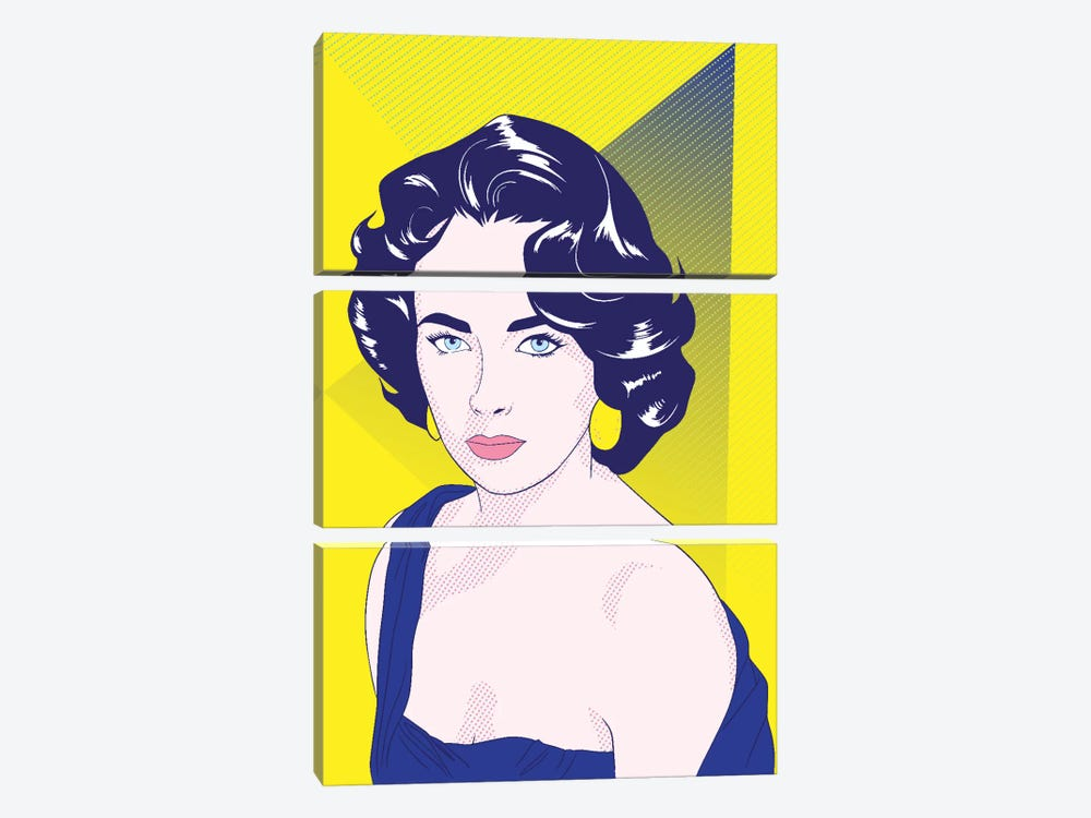 Elizabeth Color Pop by 5by5collective 3-piece Canvas Art