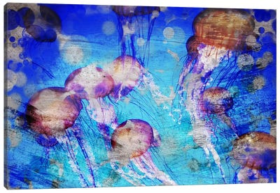 Jellies Canvas Art Print