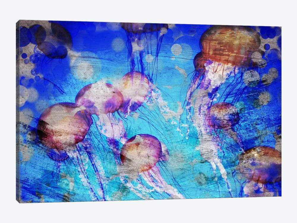 Jellies by Unknown Artist 1-piece Art Print