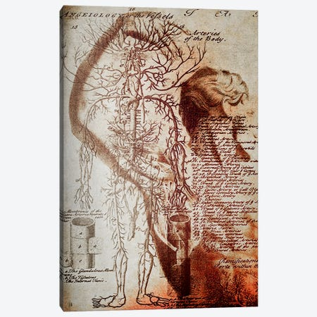 Victorian Anatomy Canvas Print #ICA1322} by Unknown Artist Canvas Art