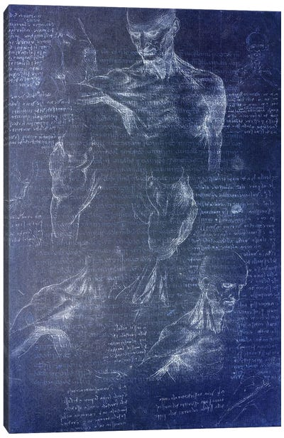 Anatomical Blueprint I Canvas Art Print