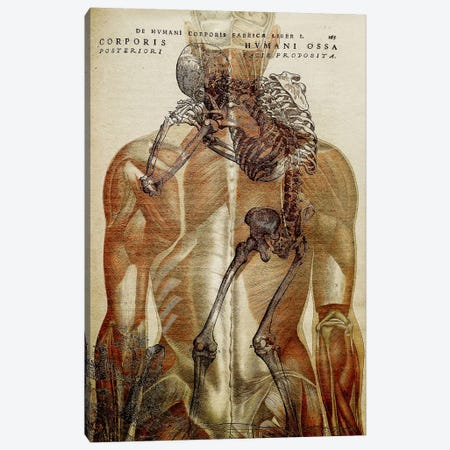 Corporis Hvmani Canvas Print #ICA1354} by iCanvas Canvas Artwork