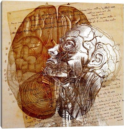 Mind of the Mind Canvas Art Print