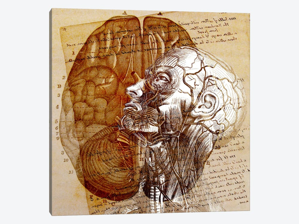 Mind of the Mind by Unknown Artist 1-piece Canvas Art Print