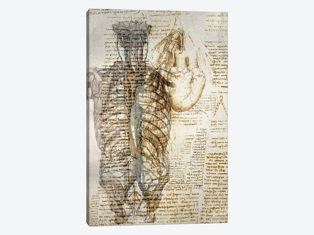 Vitruvian Kardia by Unknown Artist 1-piece Canvas Art