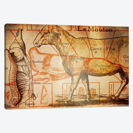 Le Mouton Canvas Print #ICA1362} by Unknown Artist Canvas Artwork