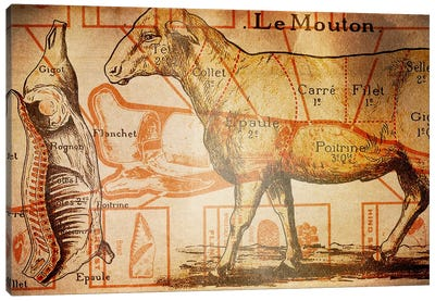Le Mouton Canvas Art Print
