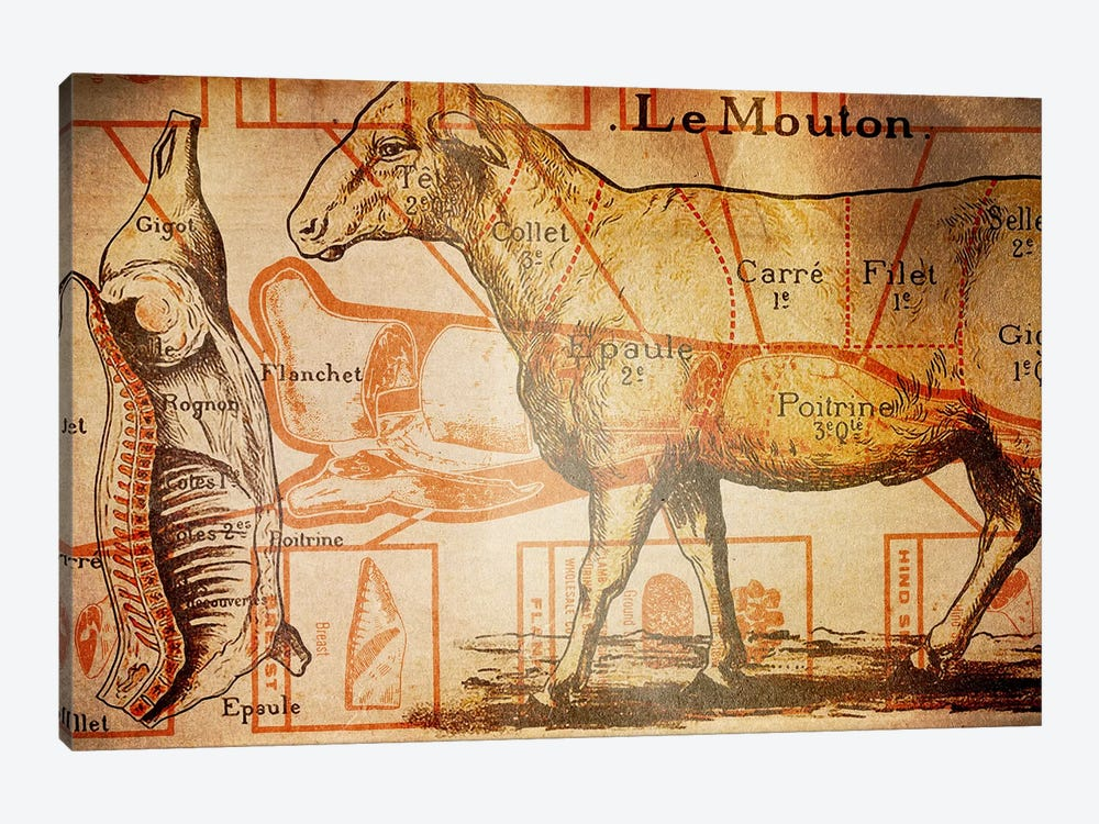Le Mouton by iCanvas 1-piece Canvas Art Print
