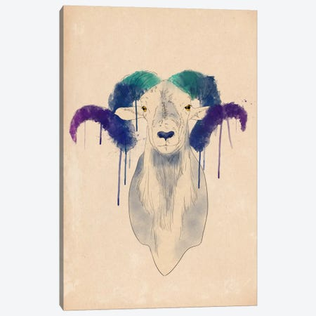 Watercolor Ram Canvas Print #ICA185} by Unknown Artist Canvas Art