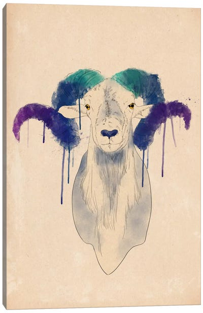 Watercolor Ram Canvas Print #ICA185