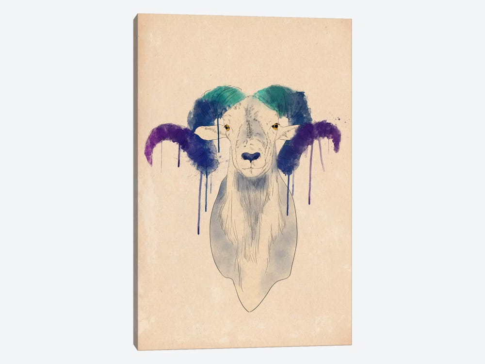 Watercolor Ram by Unknown Artist 1-piece Canvas Artwork