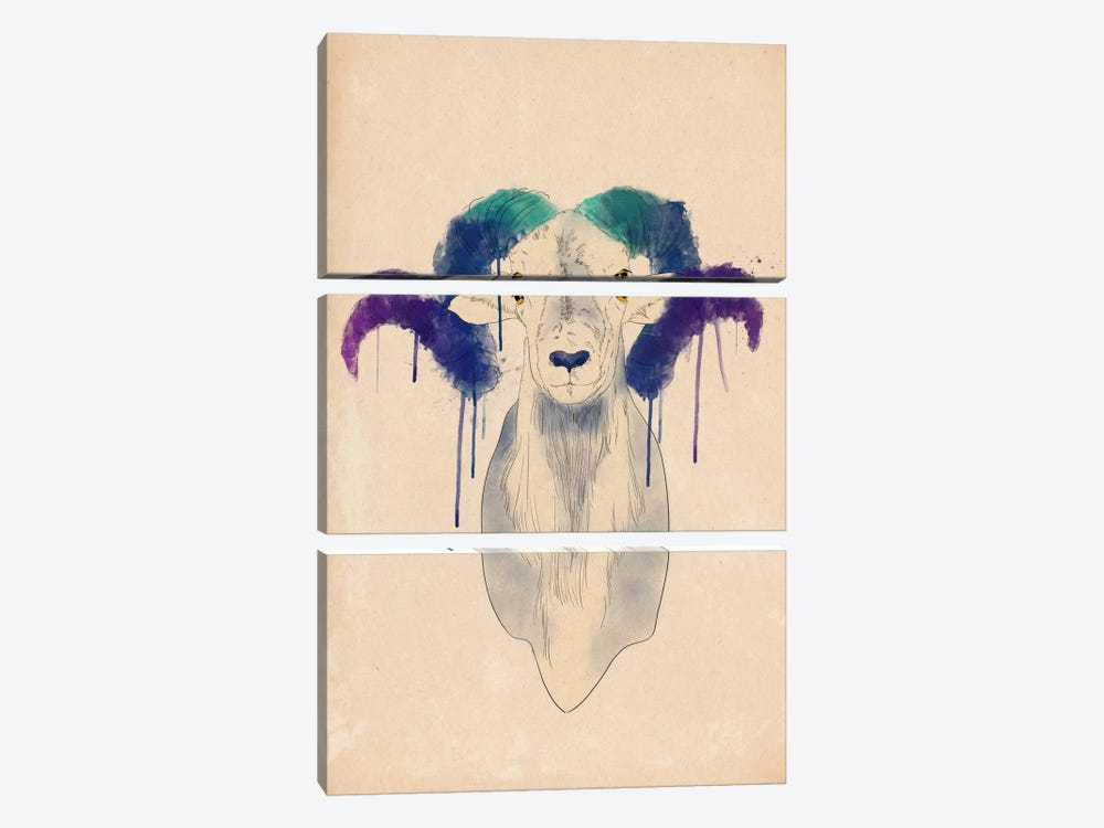 Watercolor Ram by Unknown Artist 3-piece Canvas Artwork