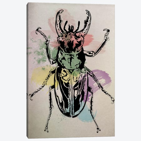 Beetle Specimine 3-Piece Canvas #ICA18} by Unknown Artist Canvas Artwork