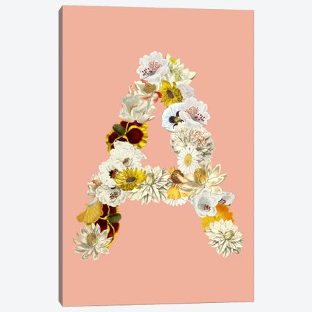 A White Flower Canvas Print #ICA216} by Unknown Artist Canvas Artwork