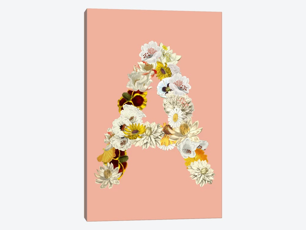 A White Flower by iCanvas 1-piece Canvas Art
