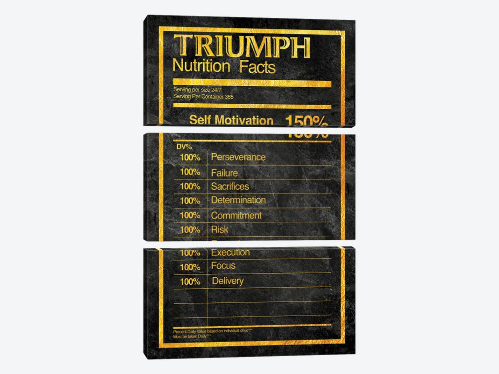 Nutrition Facts Triumph - Gold by 5by5collective 3-piece Canvas Art