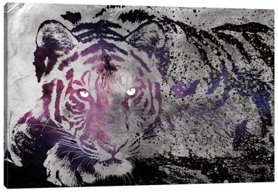 Dusk Tiger Canvas Art Print