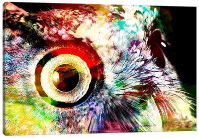 Color Rich Canvas Art Print