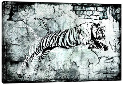 Stencil Street Art Tiger Canvas Art Print