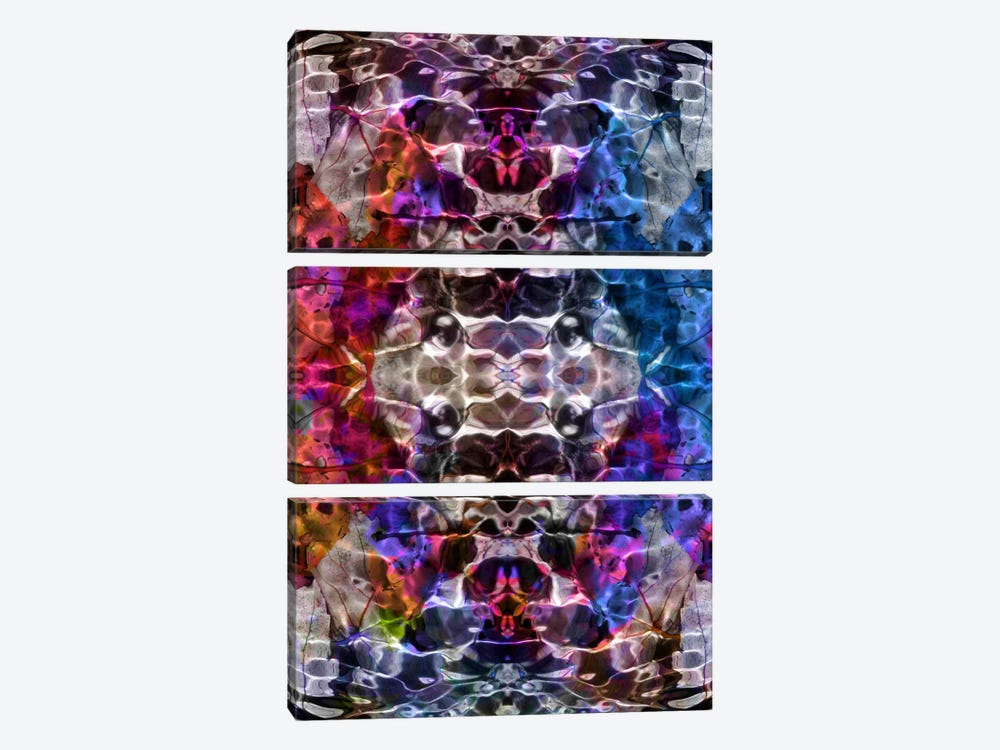 Skull Kaleidoscope by iCanvas 3-piece Canvas Print