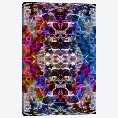 Skull Kaleidoscope Canvas Print #ICA334} by Unknown Artist Canvas Art Print