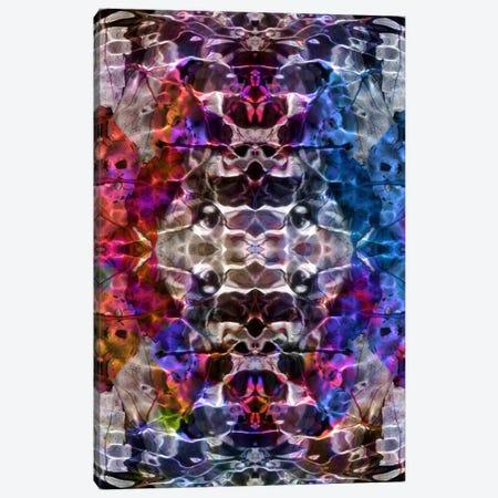 Skull Kaleidoscope Canvas Print #ICA334} by Unknown Artist Canvas Art Print